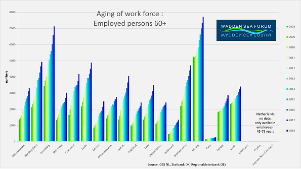 WSF-indic-age-workforce60+-in-2018.png